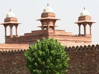 Индия/India